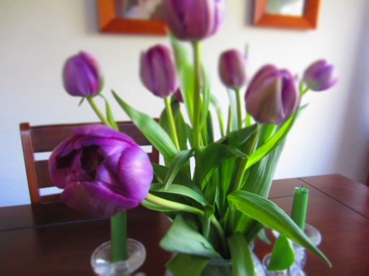 My sweet husband surprised me with some spring break tulips.