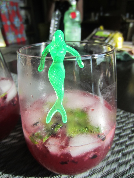 Black Berry & Meyer Lemon Gin & Tonic w/ a splash of mermaid