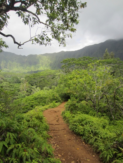 The hike to the waterfall takes about an hour and passes stunning vistas.